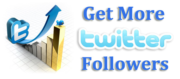 Earnings Disclaimer >> How To Get More Twitter Followers | Online Internet Marketing Help